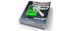 How To Choose A Profitable Niche And Dominate It