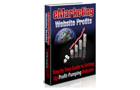 eMarketing Website Profits