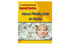Internet Marketing Basics For Newbies eBook