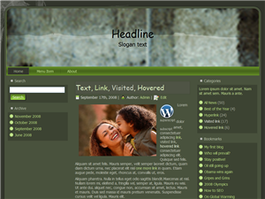 Hayly WP Theme Edition 4