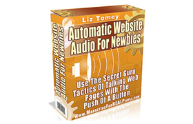 Automatic Website Audio For Newbies