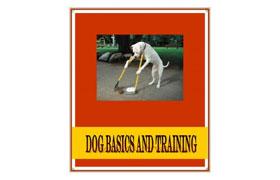 Dog Basics and Training