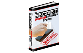 The Secret Of Winning Business Grants