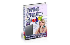 Buying Websites on eBay