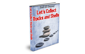Lets Collect Rocks and Shells