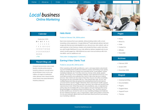 Local Business Online Marketing WP Theme