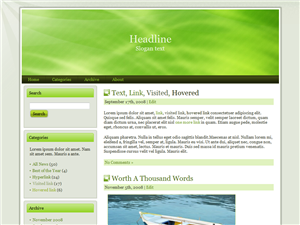 Premium WP Theme Edition 30