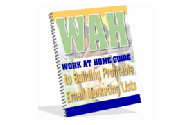 WAH Buld Profitable Email Marketing List