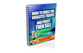 Build The Websites Traffic And Profit Then Sell