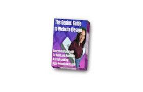 The Genius Guide To Web Design