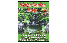Why Water Gardens