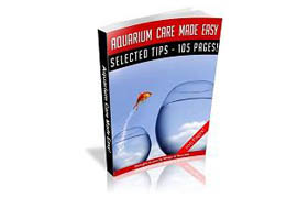 Aquarium Care Made Easy