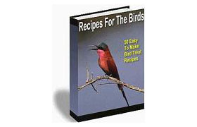 Recipes for Birds – 50 Easy to Make Bird Treat Recipes