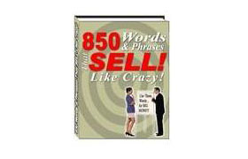 850 Words and Phrases that Sell