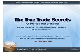 The True Trade Secrets Of Professional Bloggers