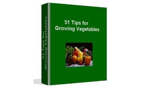 51 Tips For Growing A Vegetable Garden