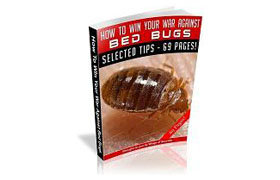 How To Win Your War Against Bed Bugs