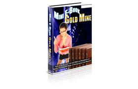 Mini Ebook Goldmine