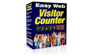 Easy Web Visitor Counter