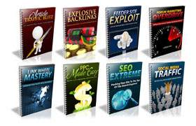 8 Traffic Mastery PLR Reports Collection