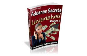 Adsense Secrets Unleashed - Module 2