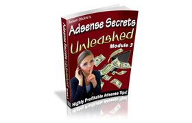 Adsense Secrets Unleashed - Module 3