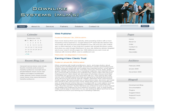 Downline Systems WP Theme