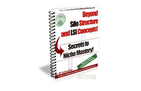 Beyond Silo Structure and LSI Concepts