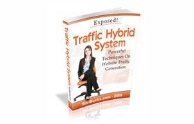 Traffic Hybrid System