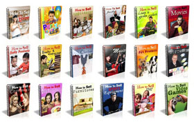 18 PLR Niche Reports Package