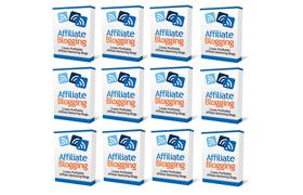Affiliate Blogging Video Series