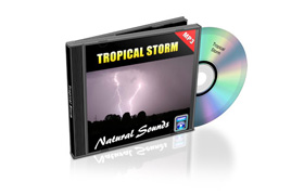 Relaxation Audio Sounds Tropical Storm