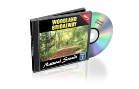 Relaxation Audio Sounds Woodland Bridalway