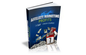 Affiliate Marketing Profit