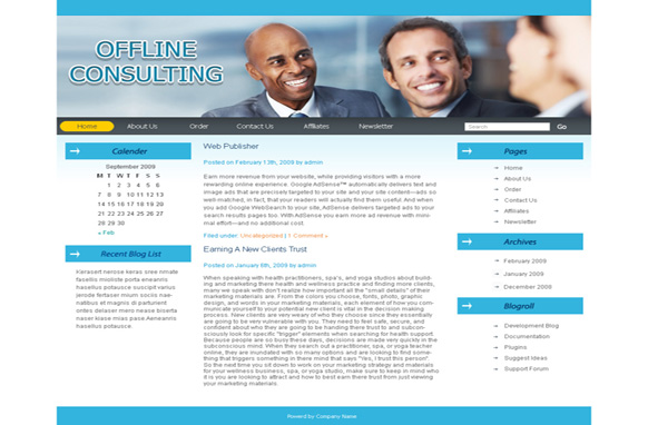 Offline Consulting WP Theme & PSD Template