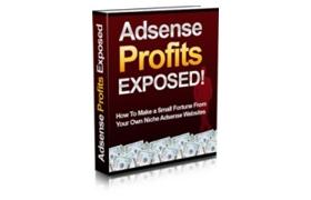 Adsense Profits Exposed