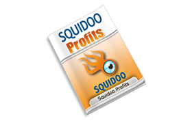 Squidoo Profits