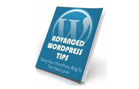 Advanced WP Tips