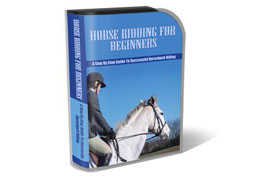 WP Templates Horse Riding For