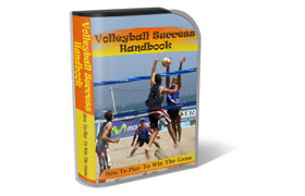 WP Templates Volley Ball Success