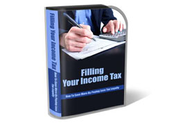 WP Theme and HTML Template Income Tax