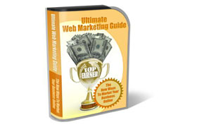 WP Theme Template Web Marketing Guide