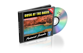 Relaxation Audio Sounds Dusk At The Oasis