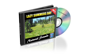Relaxation Audio Sounds Lazy Summer Day