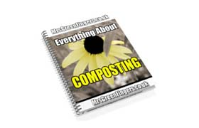 Everything About Composting