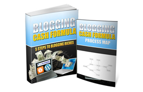 Blogging Cash Formula with Process Map