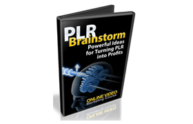 PLR Brainstorm Making PLR Products Unique