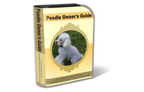 WP Theme and HTML Template Poodle Owners Guide