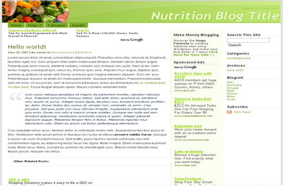 Super Adsense Wordpress Theme Nutrition