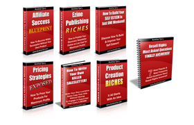 Internet Marketing Essentials Collection